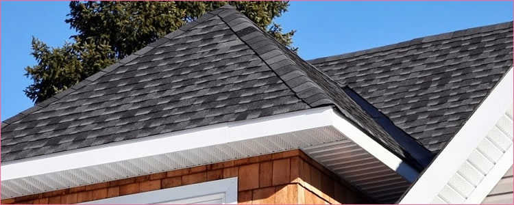 Pink House Roofing Amp Repair Roofing Contractors In
